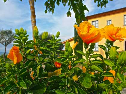 Urlaub_Thermen_Toskana
